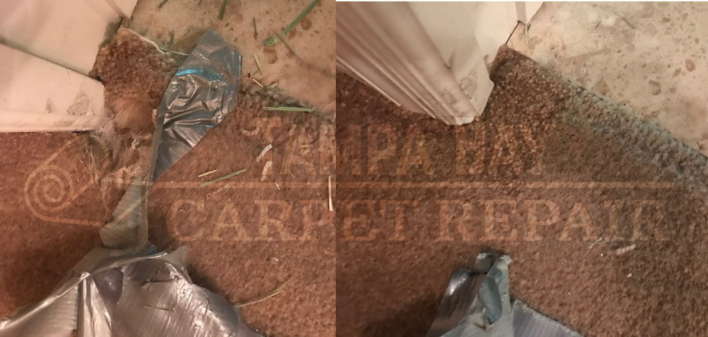 Carpet Patch Better Than Duct Tape